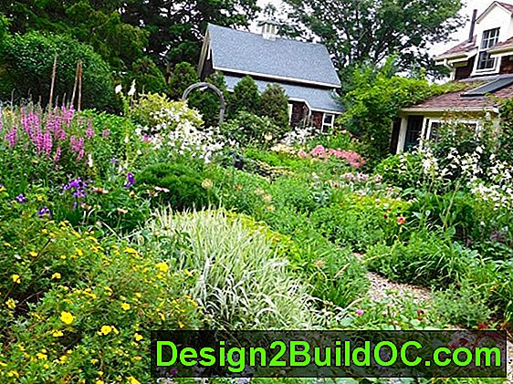 Cottage Garden Ideas - Prato e Giardino - 20192019.JulJul.SunSun