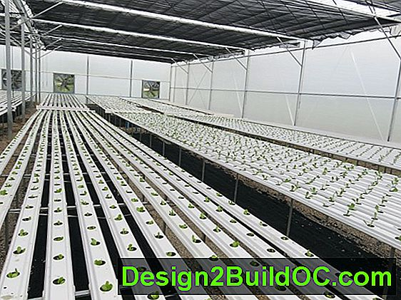 Wat Is Aquaponics?