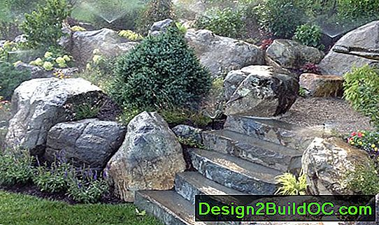 Stepping Plants Za Bluestone Patio